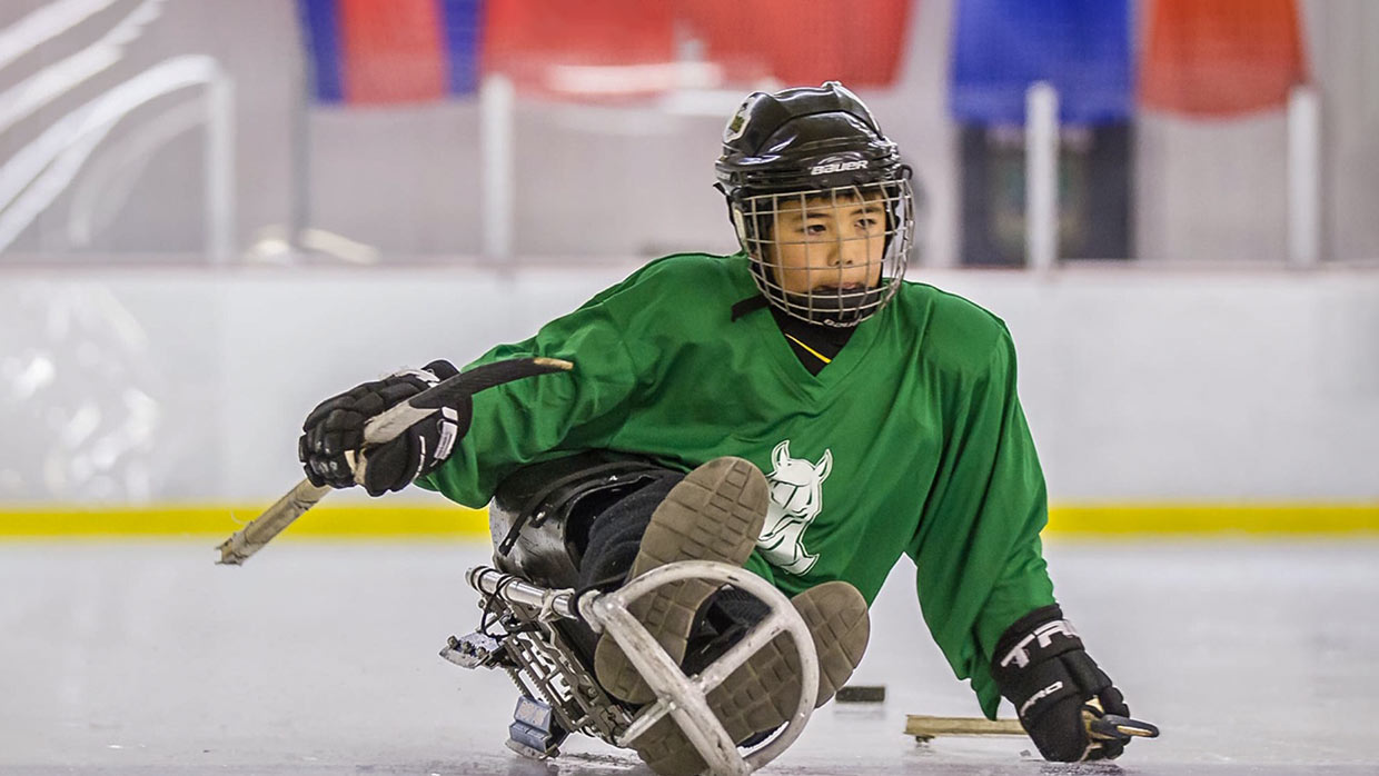 Stockton Colts Sled Hockey